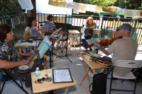 Island Dulcimers making music.